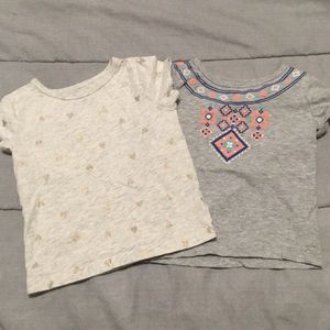 Two toddler girls Carter's tees